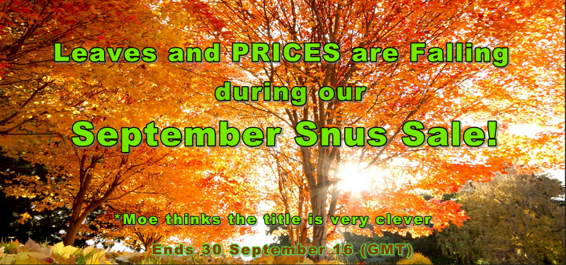 It's almost Fall so these prices have fallen 20% this Month!